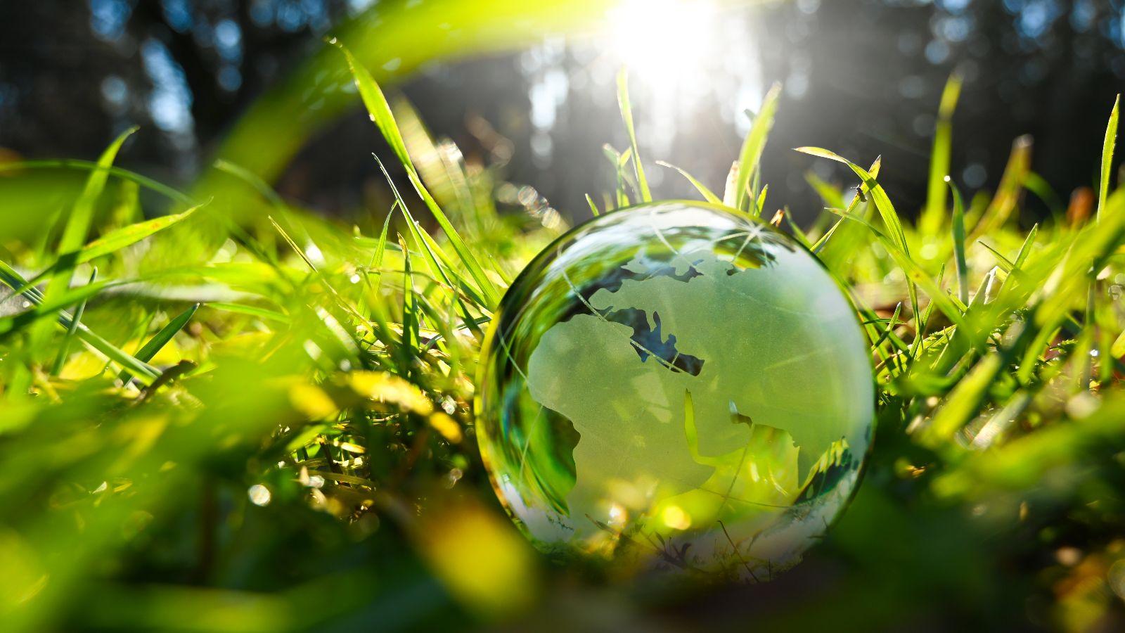 Gläserne Erdkugel liegt im Gras in der Sonne